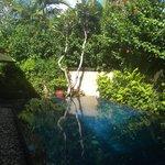 Pool - 3-bed villa