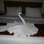 Swan A beautiful Towel Work