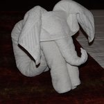 Elephant Towel Art