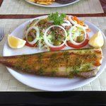 Grilled sole with salad