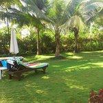 garden and sun beds
