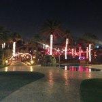 1 des piscines