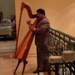 the man playing the harp every night at dinner in the main restaurant. a nice