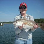 Redfish in March