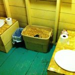 Composting Toilet: 1 for liquids, 1 for solids!