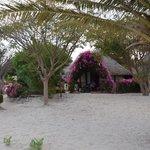 Foto de Lodge du Delta Niominka
