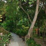 Área verde del Villagio