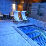 Le petit cion piscine privé de la chambre
