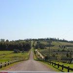 El camino de entrada a Fassano
