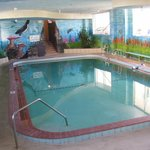 Heated indoor pool ( winter time)