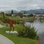 Katikati Bird Walk - Uretara Estuary & Yeoman Walkway