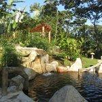 Silencio del Campo Hot Springs & Waterfall