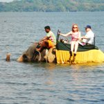 elephant also takes a dip in the lake