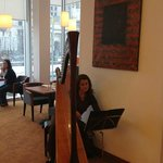Harp at breakfast