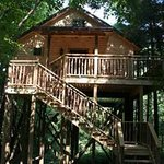 Treehouse Cabins at Pine Cove Lodging
