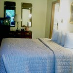 Master Bedroom has a comfortable Queen bed