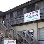 The Stingaree