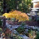 Autumn at Whitley House