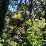 Foto de Eden Garden