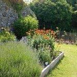 Lewes Priory Park Photo