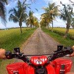 Aussie Bali  Adventures