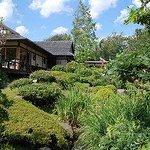 De Japanske Haver Cafe Photo
