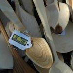 Woodmatters Bush Craft and Wood Courses Photo