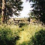 Foto de Steane Park Garden