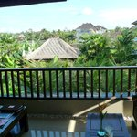 Balcony view from batuan Villa