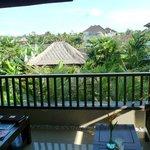 Balcony view from batuan Villa