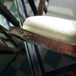 Mold on guest room chair in room 1145