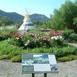 Sawtooth Botanical Garden-billede