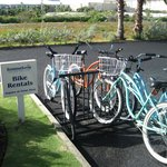 Bikes to use at Sunshine Suites.