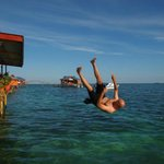 Jump into the sea from Scuba Jeff's sundeck