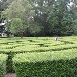 One of the mazes