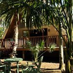 Southern Palm Bed and Breakfast Foto