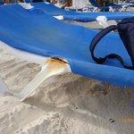 Etat des transats de la plage (photo 4)