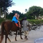 my kids loved horse riding alomg the beach