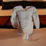 Our welcome towel elephant