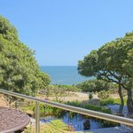View from Milkwood suite