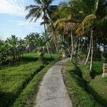 """Le chemin d'accès au """"resort"""""""
