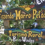 fazenda Morro Pelado
