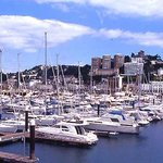 Torquay Marina, local attraction