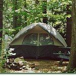 Pinederosa Camping Area Picture