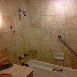 Shower with Bath tub