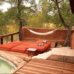 Garonga Safari Camp-bild
