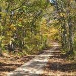 Nature's Campsite Foto