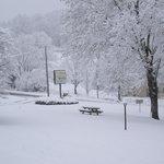 Winter at Roseloe