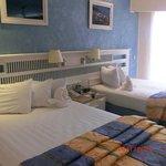 La chambre 2430 avec vue partielle sur l'océan.  Palmier devant....