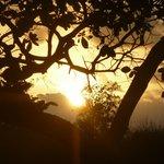 lever de soleil dans le jardin